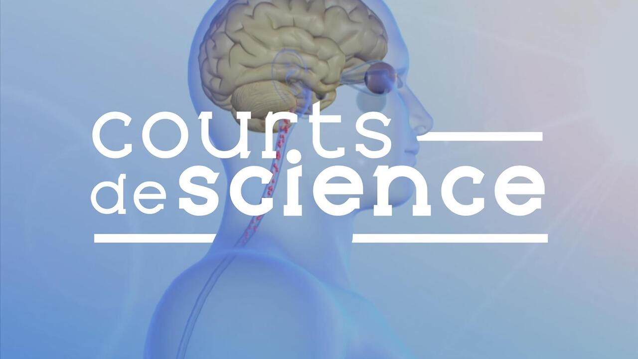 Courts de science